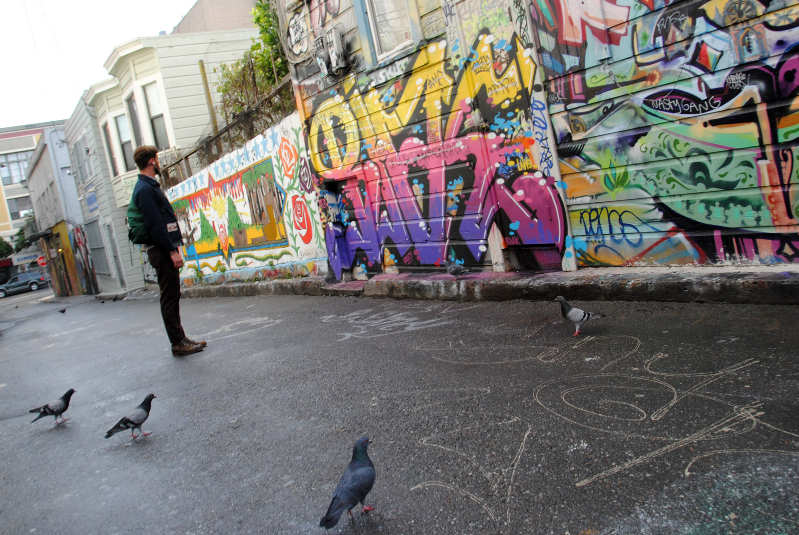 Image shows a man and some pigeons facing a mural.