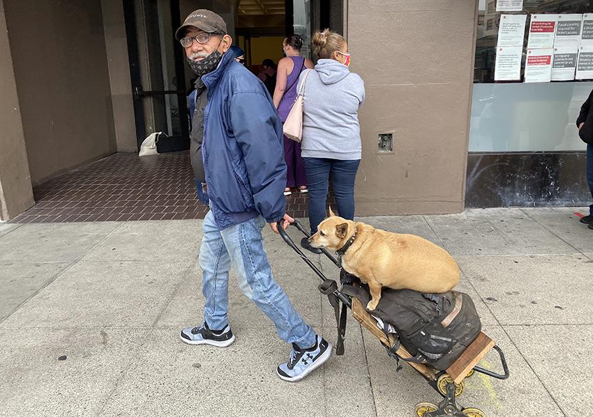 Snap: Doggie transport