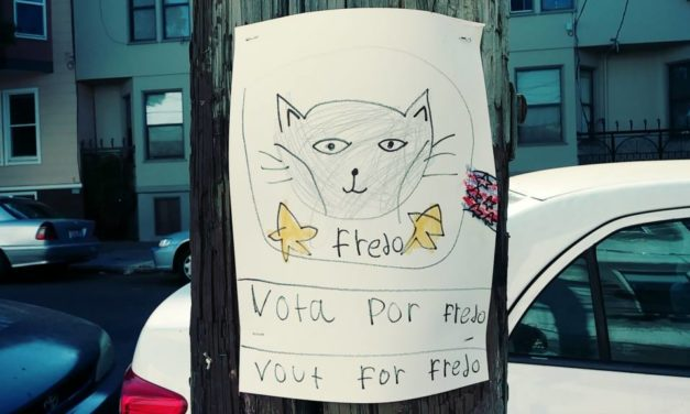 Snap: Candidato popular