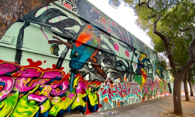 New Mural 'Birds of the Americas' Unveiled on Folsom Street