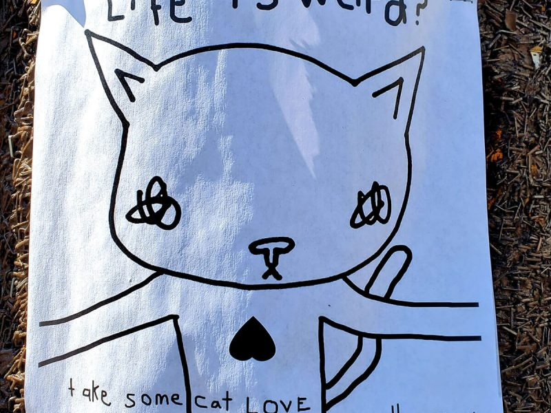 Life is Weird Kiti poster around the Mission