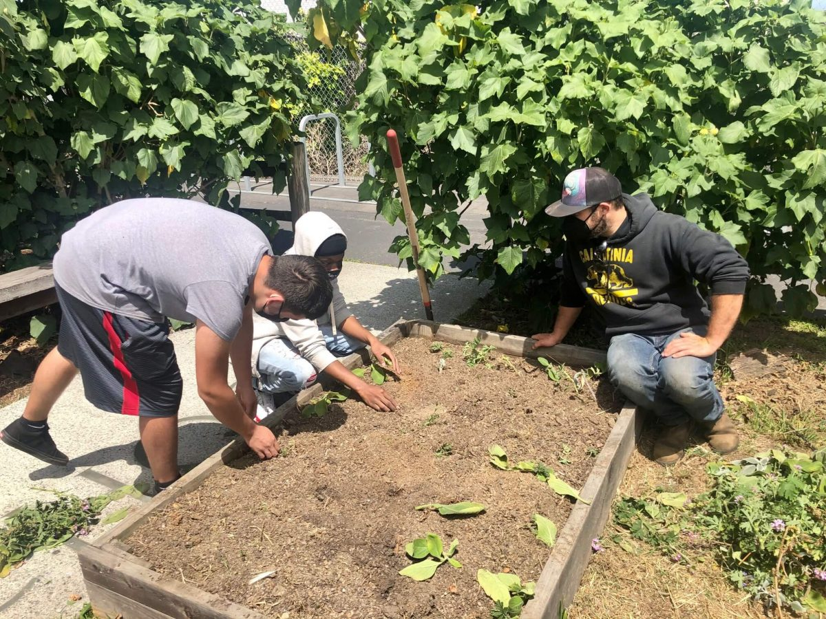Students learn about science in the garden at Independence High School.