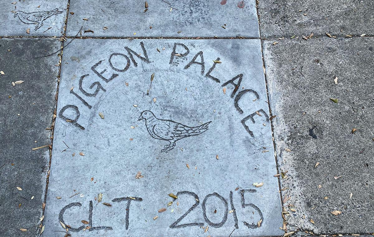Pigeon Palace