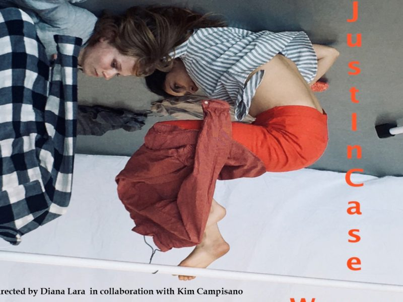 "Flyer, art installation, ""The Just In Case Woman,"" Diana Lara"
