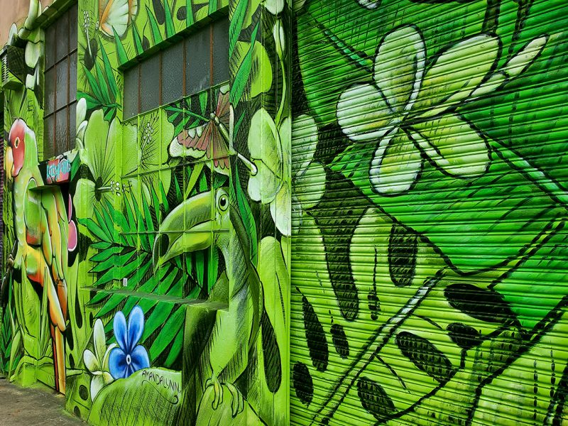 Urban forest mural