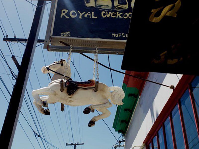On 19th Street. Royal Cuckoo